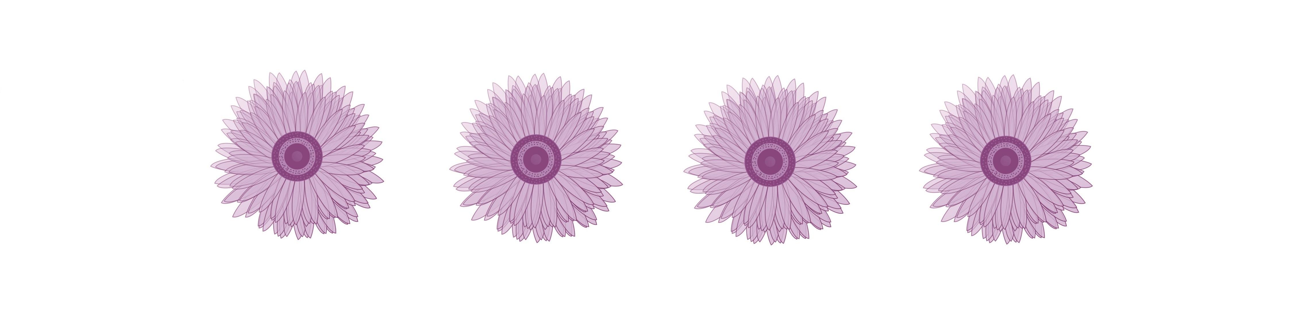 Flor de Cidreira